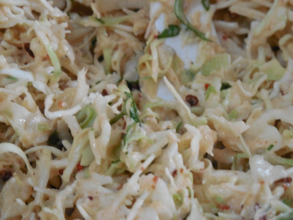 Slaw close up