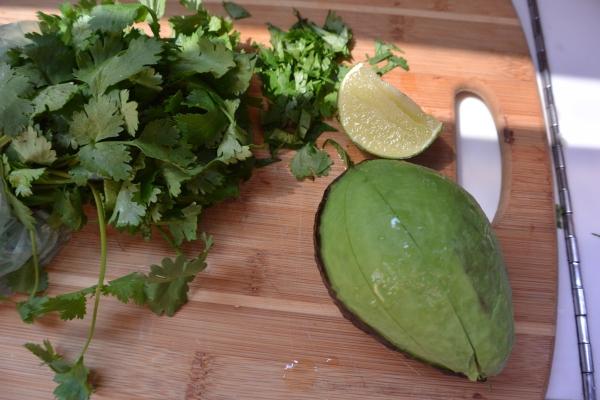 avocado cilantro and lime